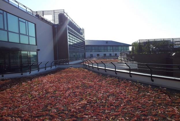 Vérification de l'étanchéité des toits terrasses par circulation de fumigène